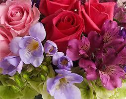 florist ga about the vine brunswick ga florist