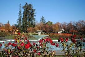 san jose rose garden real estate san jose rose garden homes