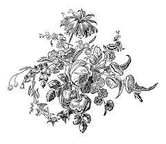 ornamental flower arrangement book illustrations