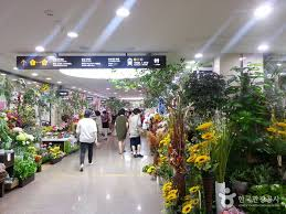 wholesale flowers near me seoul express terminal gyeongbu yeongdong line 서울고속버스