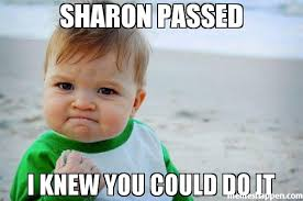 I Knew It Meme - sharon passed i knew you could do it meme success kid original