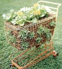 container gardening ideas e z vegetables herbs and flowers