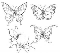 butterfly drawing step by step how to draw a monarch butterfly