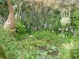 Wildlife Garden Ideas Creating A Pond Wildlife Trust