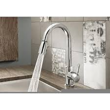 Blanco Faucets Kitchen Blanco 441649 Sonoma Stainless Steel Pullout Spray Kitchen Faucets