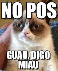 Pos Meme - no pos grumpy cat meme on memegen
