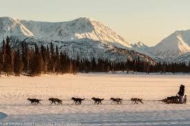 northern lights 300 sled dog race u0026 aurora borealis photography