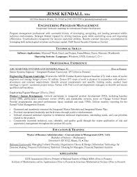 It Risk Management Resume Project Manager Resume Examples Amazing Bachelor Of Management