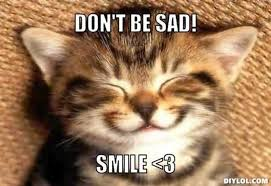 Sad Kitten Meme - meme generator kitten 100 images cute kitten group meme
