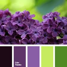 Purple Color Shades Light Purple Color Color Palette Ideas
