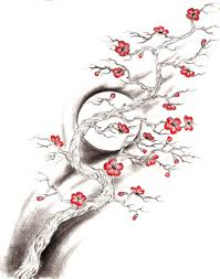 cherry blossom tree tattoo sketch photo 2 real photo pictures
