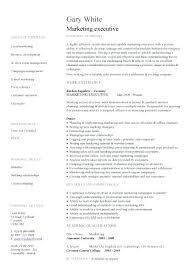 executive resume template word download 9 reference pic sales 1