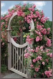 rosy garden gate flowers garden love gateways and beyond