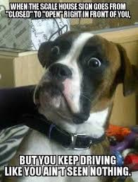 Memes Jokes - funny trucker jokes truck driver memes no bull trucking