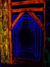 How To Make A Haunted Maze In Your Backyard Best 25 Halloween Maze Ideas On Pinterest Diy Halloween Maze