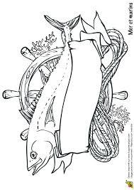 best 25 coloriage mer ideas on pinterest poisson à colorier