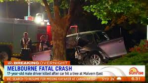 teenager killed in malvern east car crash