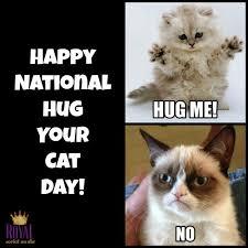 Cat Hug Meme - national cat day 2015 memes