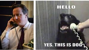Cameron Meme - david cameron posted a picture of himself on the phone and spawned a