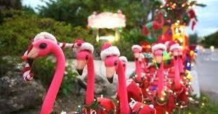 flamingos wearing santa claus hats santa claus hats pinterest