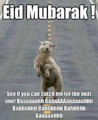 Eid Memes - eid mubarak see if you can catch me for the next one baaaaaahh
