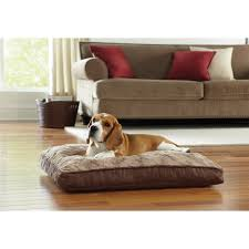 Foam Dog Bed Best Dog Beds For Small Dogs Make Sure Your Pet Howls With Happiness