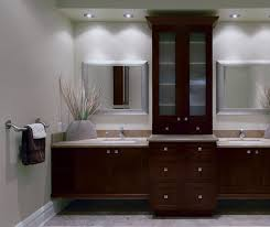 Replace Kitchen Cabinets With Shelves by Contemporary Bathroom Vanities With Storage Cabinets By Kitchen