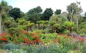 Botanic Gardens Uk Royal Botanic Garden Edinburgh Logan Botanic Garden