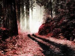 halloween forest background 45 horrifying photoshop tutorials cieneldotnet webmaster tutorials