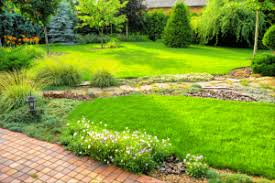 Grass For Backyard Ideas 4 Backyard Ideas To Spruce Up Your Home Better Homes And Gardens