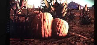 found pumpkin like carbon fruits on halloween like planet