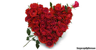 How Much Does A Dozen Roses Cost 10 Cheapest Places To Buy Your Flowers For Valentine U0027s Day
