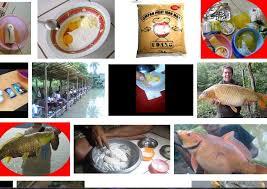 cara membuat umpan mancing ikan mas harian resep umpan mancing ikan mas sederhana sekarang ini infoikan com