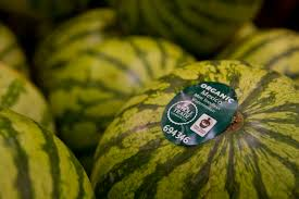 Fair Trade Home Decor Fair Trade Certified Whole Trade Watermelon From Mexico At Whole