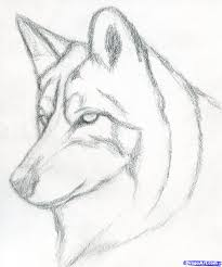 cool easy pencil drawing easy pencil drawings stepstep wolf