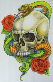 snake skull colour by hoviemon on deviantart