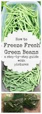 can you freeze it a mini guide to vegetables infographic