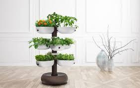 100 indoor apartment garden indoor gardens for small apartments