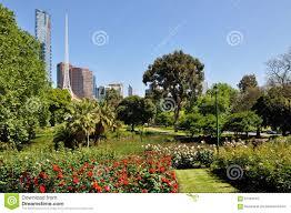 royal botanic garden melbourne stock photo image 61581610