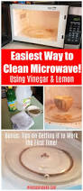 best 25 clean microwave vinegar ideas on pinterest vinegar