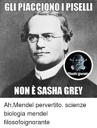 Sasha Grey Meme - sasha grey artist about timeline artist sasha grey meme on