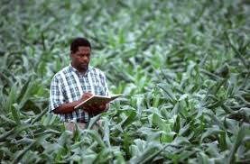 farm business planning beginning farmers