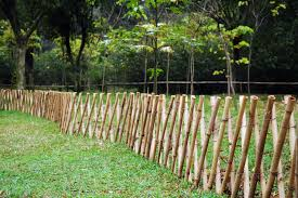 bamboo screen fence design and ideas of house