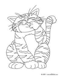 tabby cat coloring pages tabby cat coloring page nice cat drawing for kids more animals