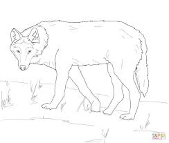gray wolf on alert coloring page free printable coloring pages