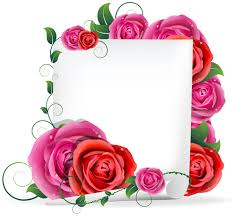 blank paper and rose vector graphics free u2013 over millions vectors