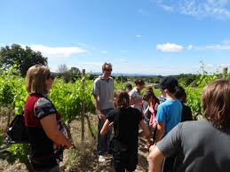 op a chambre d agriculture the bergerac wine tasting and terroir tour les magnolias lalinde