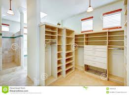 Bathroom Linen Closet Ideas Download Bathroom And Walk In Closet Designs Gurdjieffouspensky Com