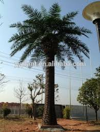 cheap big artificial palm decorative tree large outdoor artificial