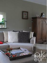 chambre de sejour decoration interieur salon sejour mignon chambre intérieur maison